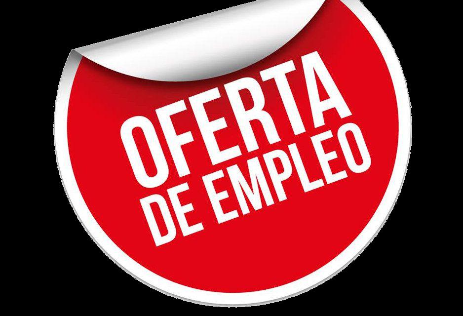 Analista táctico y 2º Entrenador – 1ª Regional Madrid